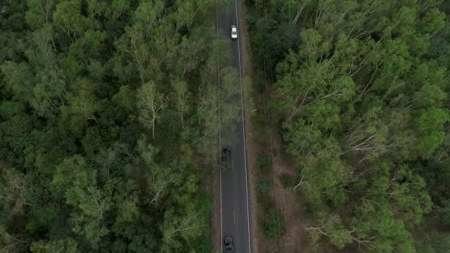 丘ルート空中ショットで運転 - 散歩道点の映像素材/bロール