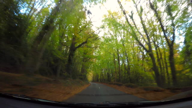 Driving On Irish Rural Road In Autumn