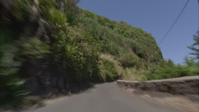 T/L, POV, Driving on mountain road, Maui, Hawaii, USA