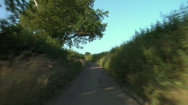 POV, Driving on narrow rural road, Hertfordshire, England