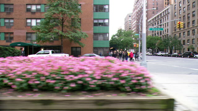 ds driving on park avenue, with traffic, pedestrians, and residential and office buildings beyond, and turning left and braking at an intersection / new york city, new york, united states - median nerve stock videos & royalty-free footage