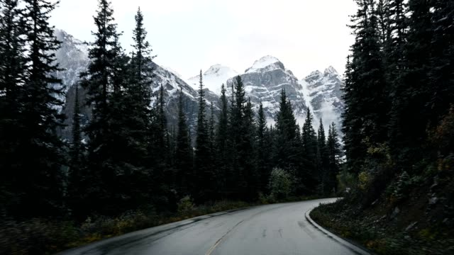 driving on road in pine forest with rocky mountains in moraine lake at banff national park - tarmac stock videos & royalty-free footage