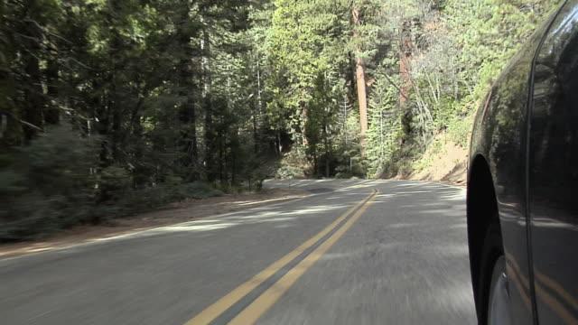 vídeos de stock, filmes e b-roll de pov driving on road in yosemite national park in autumn, california, usa - ponto de vista de câmera