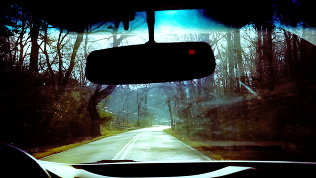 stockvideo's en b-roll-footage met driving on shaded sunlit country road - schaduwe