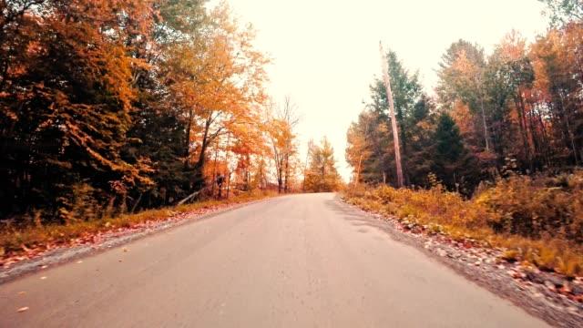 vidéos et rushes de conduite sur la route de la nouvelle-angleterre - automne