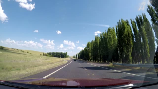 driving on treelined road highway in country rural australia - なだらかな起伏のある地形点の映像素材/bロール