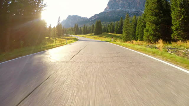 driving on winding road through forest at sunset - point of view video stock e b–roll