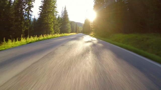 木を通して輝く太陽と森の中の曲がりくねった道の運転 - 木立点の映像素材/bロール