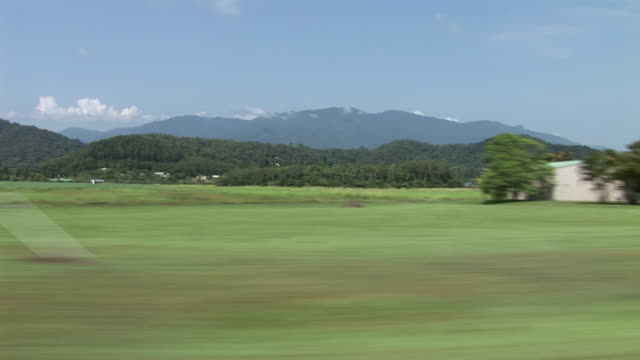 SIDE POV Driving past mountains, rainforest and sugarcane fields on Cape Tribulation, Tropical North Queensland, Australia