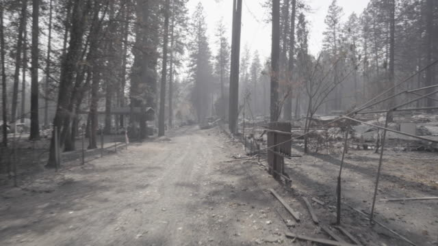 pov, driving past rubble in wildfire - car point of view stock videos & royalty-free footage