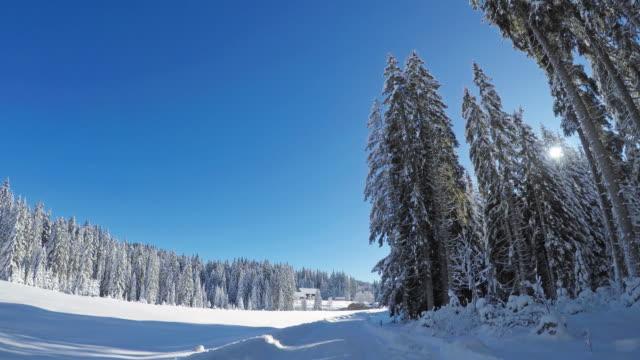 Verschneite Landstraße durch weiße Wald Sicht befahren