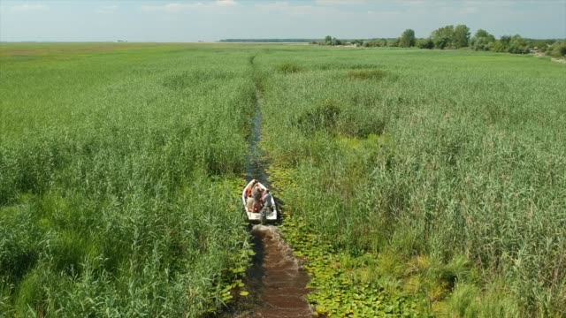 driving small boat between reeds in a beautiful place danube delta of romania. aerial view - romania stock videos & royalty-free footage