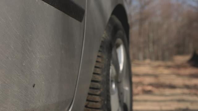 vídeos de stock, filmes e b-roll de dirigindo o carro pela floresta - molhado