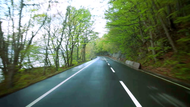 driving the green forest road - satoyama scenery stock videos & royalty-free footage
