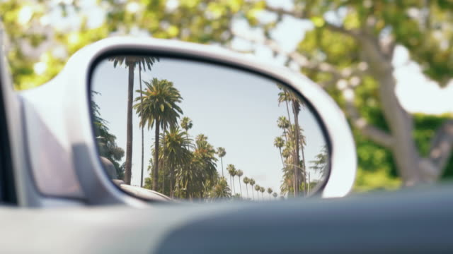 driving through a boulevard with palm trees in california - mirror stock videos & royalty-free footage
