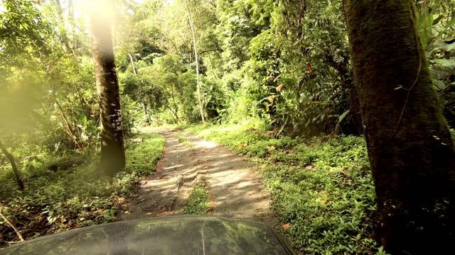 4X4 Fahrt durch einen abgelegenen Regenwald Costa Ricas: Muddy Road