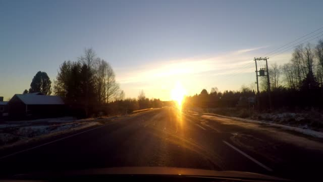 driving through an idyllic forest with snow and bright yellow sun shining through car windscreen - forestry industry stock videos & royalty-free footage