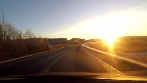 driving through an idyllic forest with snow and bright yellow sun shining through car windscreen - finland stock videos & royalty-free footage