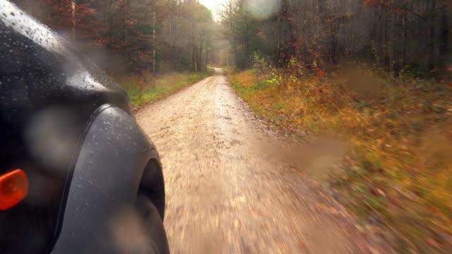 Driving Through Autumn Forest In Rain