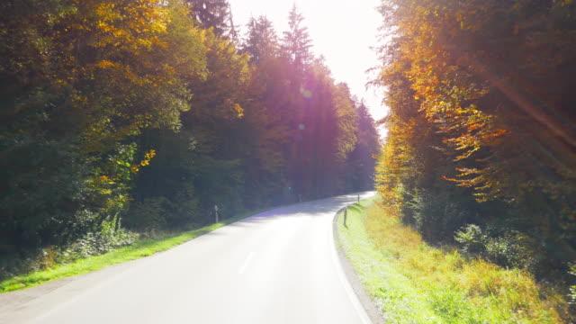 Fahrt durch Herbst Wald auf sonnigen Tag