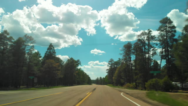 pov driving through forest and sedona - diminishing perspective stock videos & royalty-free footage