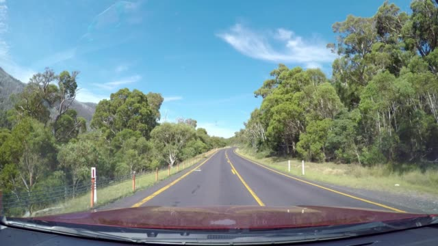 driving through forest with blue sky in summer, snowy mountains, australia - bonnet stock videos & royalty-free footage