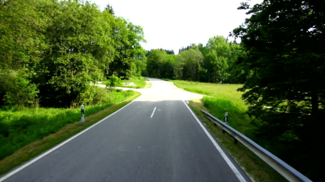 t/l driving through green forest pov - roadside stock videos and b-roll footage