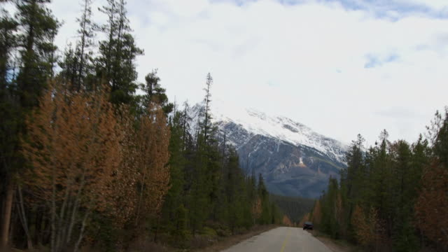 POV TD Driving through Jasper National Park, snow capped Canadian Rockies in background / Alberta, Canada