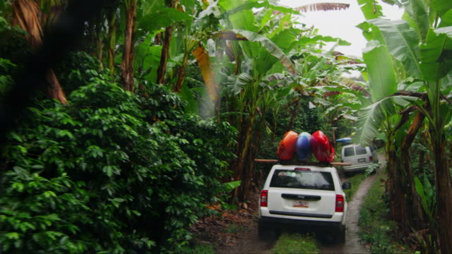 driving through jungle with kayaks on car - mud stock videos & royalty-free footage