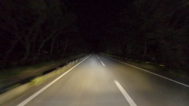 driving through midnight forest road - fanale anteriore video stock e b–roll