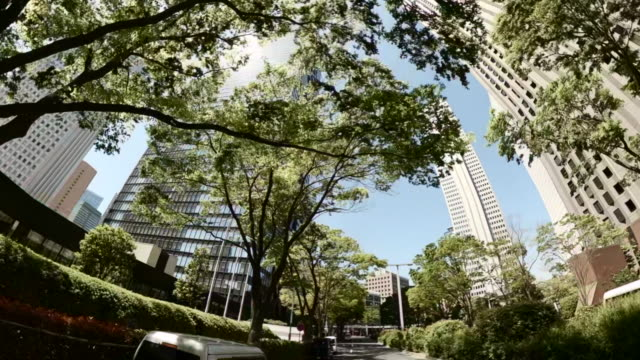 driving through skyscrapers in the city. looking up view of skyscrapers and green trees. - plusphoto stock videos & royalty-free footage