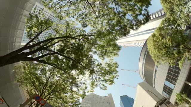 vidéos et rushes de conduire à travers les gratte-ciel dans la ville. vue de regard vers le haut des gratte-ciel et des arbres verts. - évolution de l'espèce