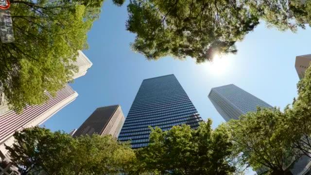 stockvideo's en b-roll-footage met rijden door wolkenkrabbers in de stad. het kijken omhoog mening van wolkenkrabbers en groene bomen. - kantoorgebouw