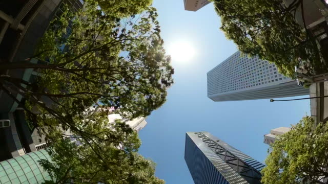 driving through skyscrapers in the city. twist and looking up view of skyscrapers and green trees. - plusphoto stock videos & royalty-free footage