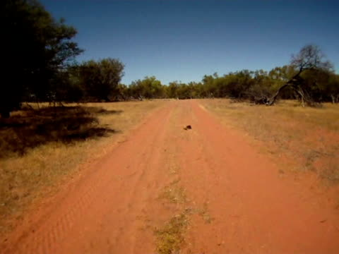 NTSC-ZEITRAFFER: Fahren Sie durch die australische Outback