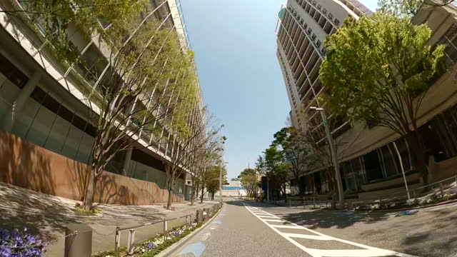 driving through the city at the sunny day. empty streets of tokyo. - plusphoto stock videos & royalty-free footage