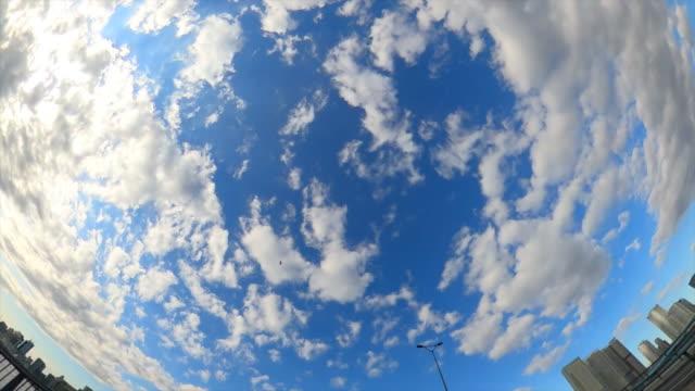 vídeos de stock e filmes b-roll de driving through the city / looking directly up at the sky - plusphoto