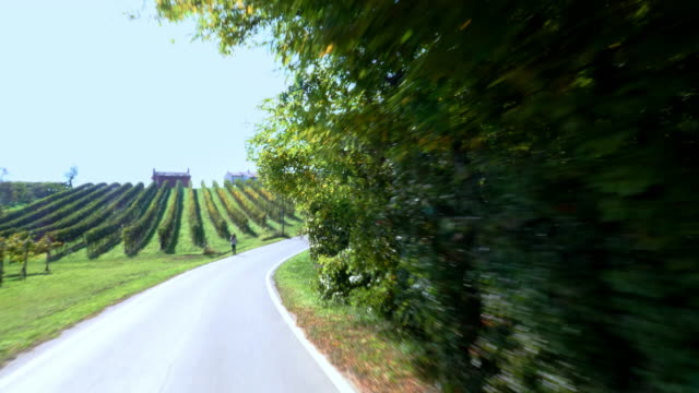 driving through  vineyard landscape north of italy - car point of view stock videos & royalty-free footage