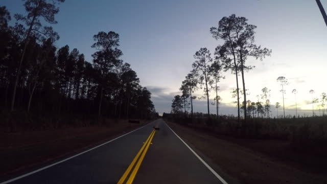 Driving/Process Plates