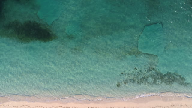drone 4k aerial view of perfect beach with shoreline of clear blue water - grace bay stock videos and b-roll footage