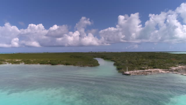 Drone Aerial 4k view of mangrove cay on perfect day with blue water