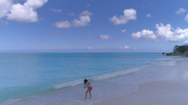 drone aerial 4k view of young girl on beach shell collecting in the caribbean - provo stock videos and b-roll footage