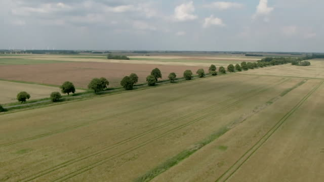 drone aerial of typical arable farmland - land stock videos & royalty-free footage