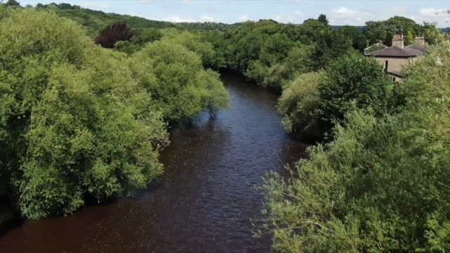 drone aerial over river in ilkley - tree stock videos & royalty-free footage