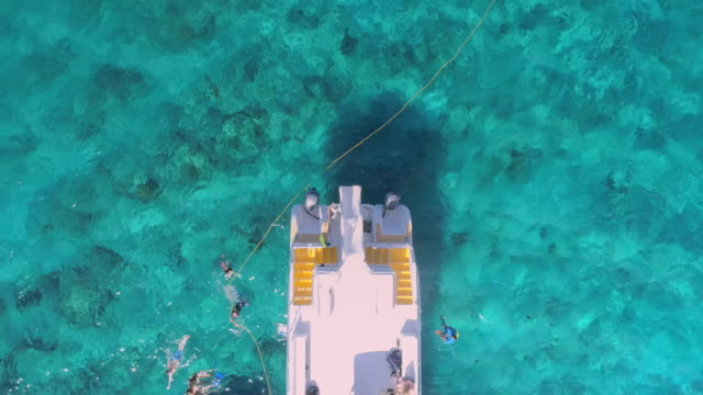 Drone Aerial pull up view of snorklers at the Barrier reef with clear blue water