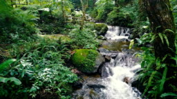 Drone Aerial Shot Approach to Tropical Waterfall with beautiful small creek in rain forest of north of Thailand