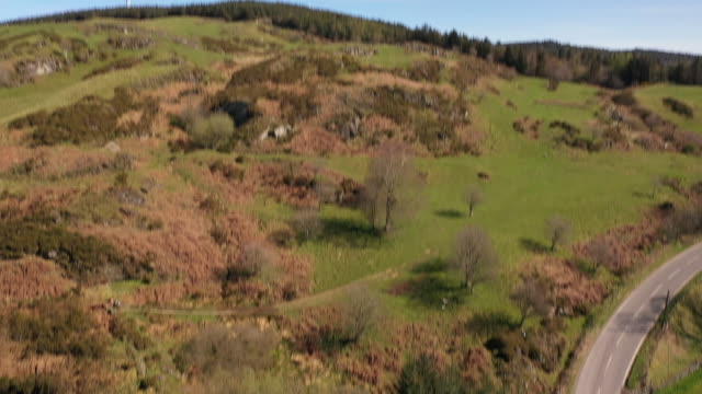drone aerial shots of north wales countryside with farm fields and sheep grazing, rolling hills etc during the coronavirus lockdown on 5 may 2020 in... - grazing stock videos & royalty-free footage