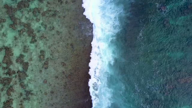 Drone aerial shots of waves breaking along the shore in the Cocos Keeling Islands and shots of a shark seen swimming in clear shallow water on 13...