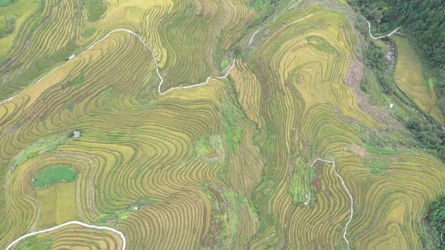 vídeos y material grabado en eventos de stock de drone aerial video of the breathtaking longji rice terraces and villages in guilin, guangxi province. filmed by: costfoto / barcroft studios / future... - idyllic