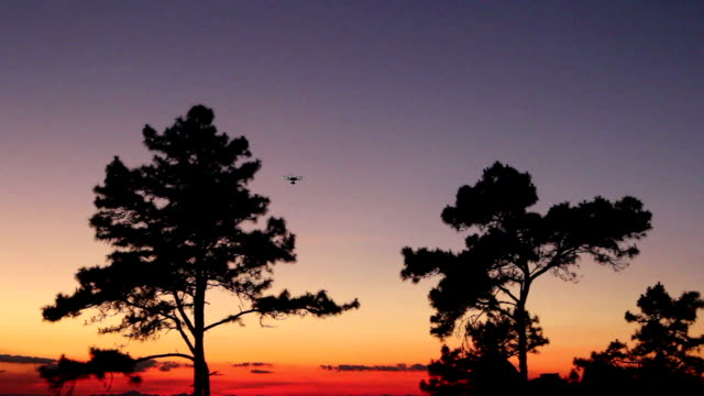 drone aircraft at tree. - radio controlled handset stock videos and b-roll footage